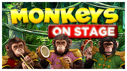 Zum Monkeys on Stage